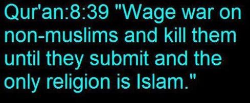 Quran 8 39