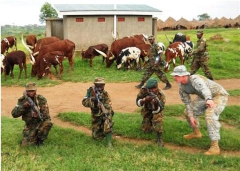 Malis militär tränas av USA 121101-f-og799-001th