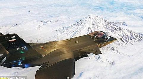 F-313