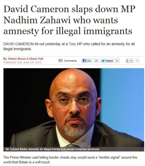 cameron nej till amnesti