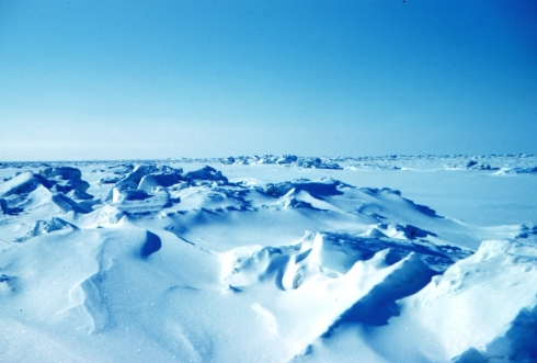 Sea_ice_terrain