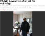 levakovic