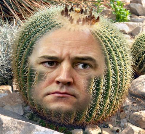 reinfeldt_kaktus