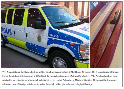 Polisbil splitter