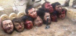 Shiia-dead