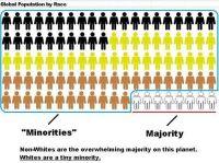 Den vita rasen är en minoritet i världen