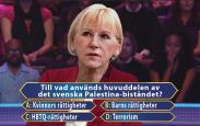 Bistånd_till_terrorism