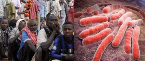 refugees-vs-tb-somali-diseases