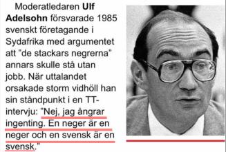 En_neger_är_en_neger