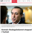 SVT_Svensk_riksdagsman_turkiet