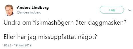 Anders_Lindberg_002
