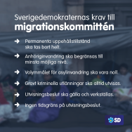 Några av Sverigedemokraternas krav...