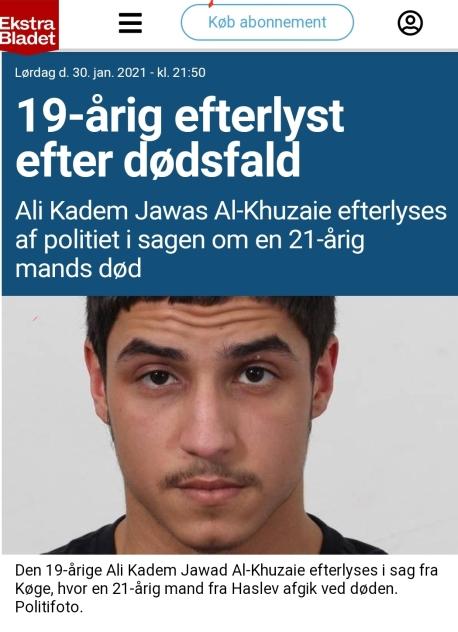 Sandor om så kallad demokrati på Sydsvenskan | Petterssons gör Sverige  lagom!